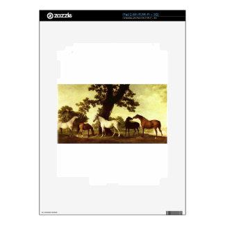 Five Brood Mares by George Stubbs iPad 2 Skin