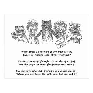 Five Cats in a Bad Mood Postcard