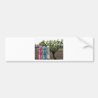 Five color clothespins hanging on rural background bumper sticker
