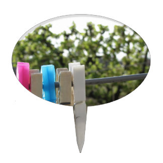 Five color clothespins hanging on rural background cake topper