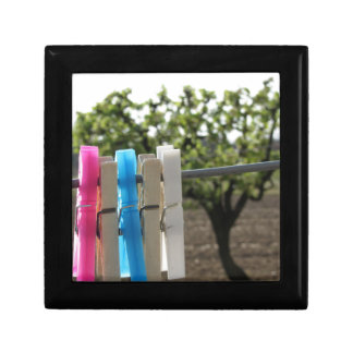 Five color clothespins hanging on rural background gift box