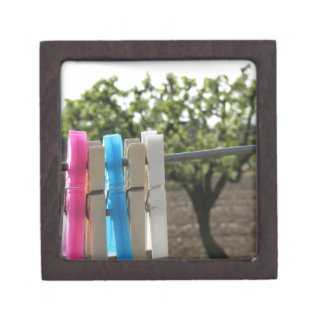Five color clothespins hanging on rural background jewelry box