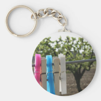 Five color clothespins hanging on rural background keychain