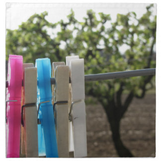 Five color clothespins hanging on rural background napkin