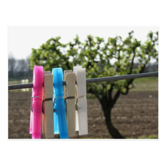 Five color clothespins hanging on rural background postcard