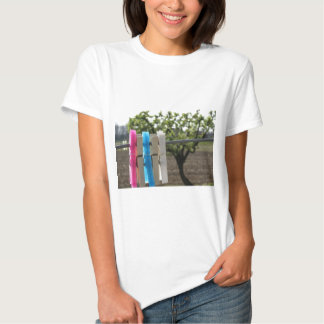 Five color clothespins hanging on rural background shirt