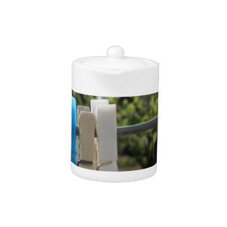 Five color clothespins hanging on rural background teapot