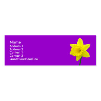 Five Daffodils Double-Sided Mini Business Cards (Pack Of 20)