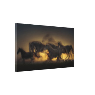 Five Horses At Sunset Canvas Art
