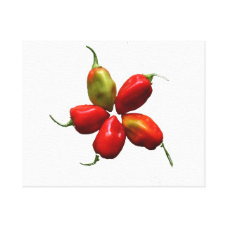 Five Hot Habanero Peppers Photograph Canvas Print