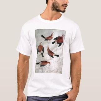 Five Jays, from the Vallardi Album T-Shirt