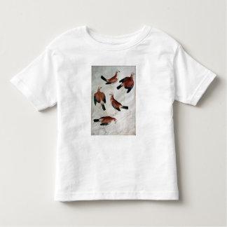 Five Jays, from the Vallardi Album Toddler T-shirt