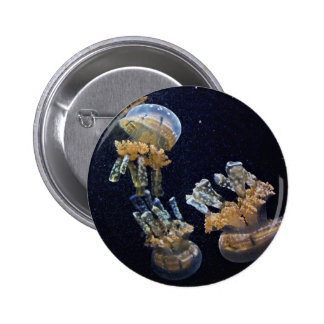 Five Jelly Fish In Space Pinback Button