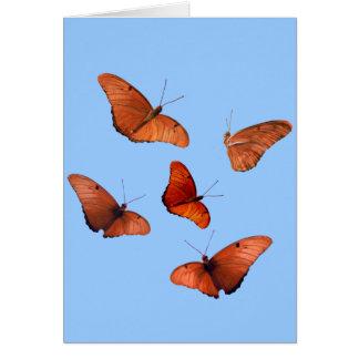 Five Julia Butterflies Card