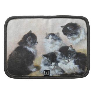 Five kittens organizers