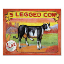 Five Legged Cow
