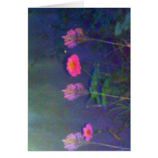 Five Night Flowers Card
