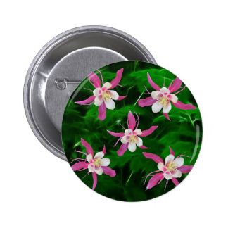 Five Pink Columbine flowers Button