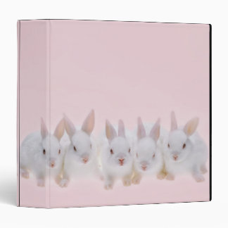 Five Rabbits 2 3 Ring Binder