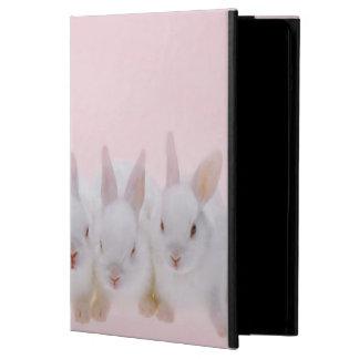 Five Rabbits 2 iPad Air Cover