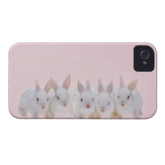Five Rabbits 2 iPhone 4 Cover