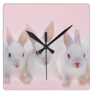 Five Rabbits 2 Square Wallclocks