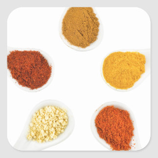 Five seasoning spices on porcelain spoons square sticker