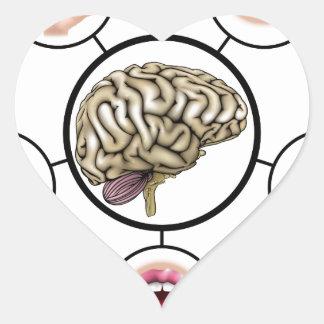 Five senses brain heart sticker