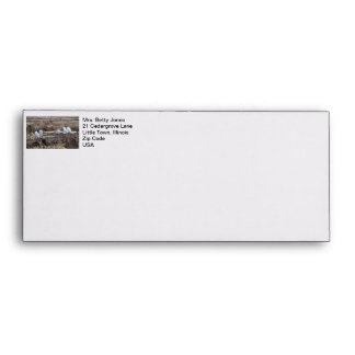 Five Snowy Owls Picture Envelope