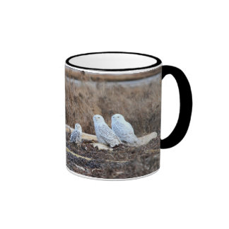 Five Snowy Owls Picture Coffee Mugs