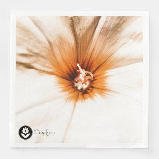 FʟᴏᴡPᴏᴡ | Bindweed ~ Amber Paper Dinner Napkin