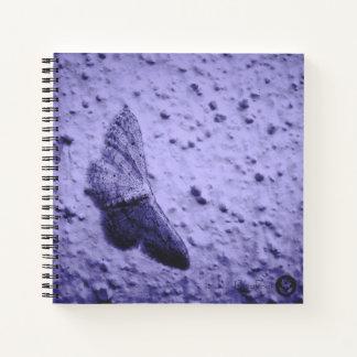 FʟᴏᴡPᴏᴡ | Butterfly ~ Diablo Notebook