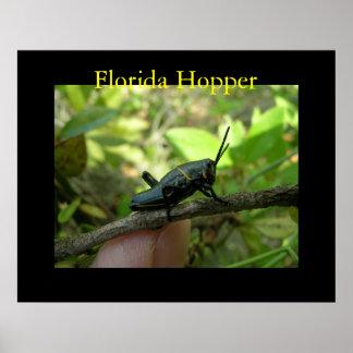 FL Hopper Posters