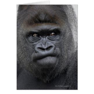 Flachlandgorilla, gorila del gorila, tarjeta de felicitación