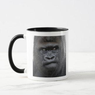 Flachlandgorilla, gorila del gorila, taza