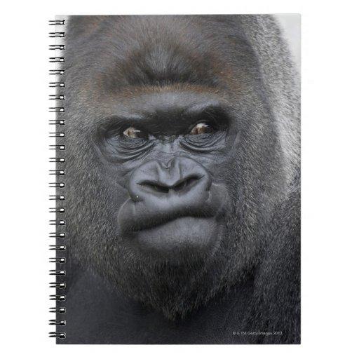 Flachlandgorilla, gorila libro de apuntes con espiral