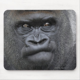 Flachlandgorilla, gorila mouse pads