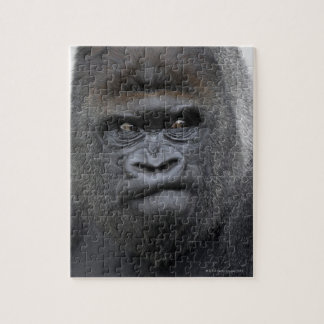 Flachlandgorilla, gorila puzzles con fotos