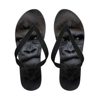 Flachlandgorilla gorila sandalias de playa