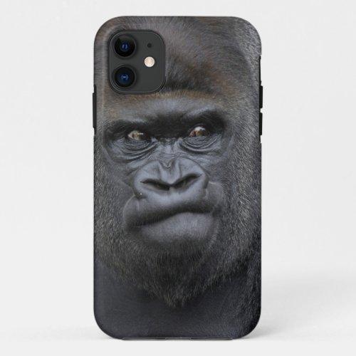 Flachlandgorilla, Gorilla gorilla, Phone Case