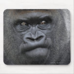 Flachlandgorilla, Gorilla Mouse Pad