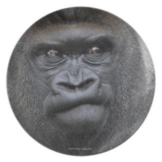 Flachlandgorilla, Gorilla Party Plates