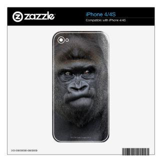 Flachlandgorilla, Gorilla Decals For The iPhone 4