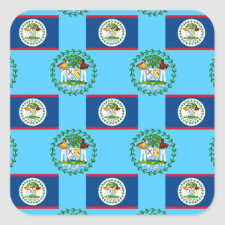 Flag and Crest of Belize Square Sticker