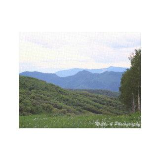 Flag Creek Mountain Scene Canvas Print