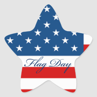 Flag Day Star Star Sticker