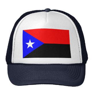 Flag de Gregorio del Pilar Gorro De Camionero