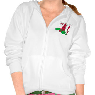 Flag in Map of Wales Pullover