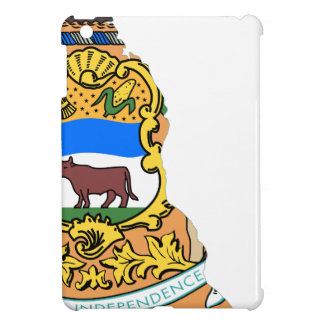 Flag Map Of Delaware Case For The iPad Mini