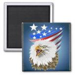 Flag N Eagle Magnet